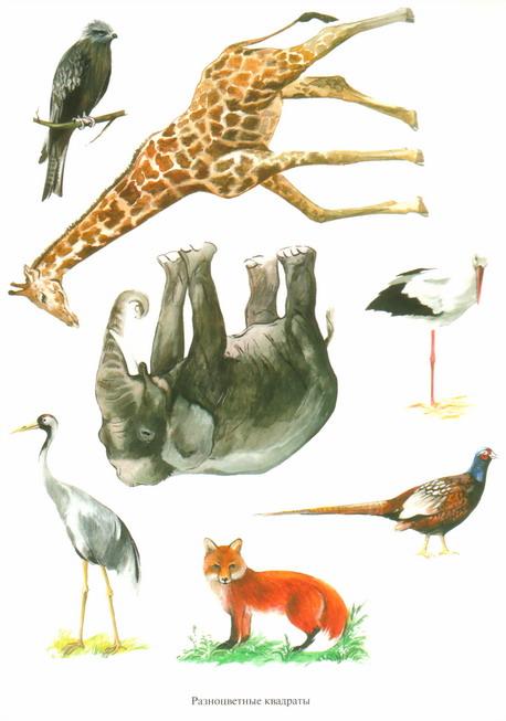 Игры по развитию лексико-грамматического строя речи у ... Картинки Домашних Животных для Детей Со Звуком
