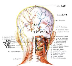 Боль в задней части головы справа