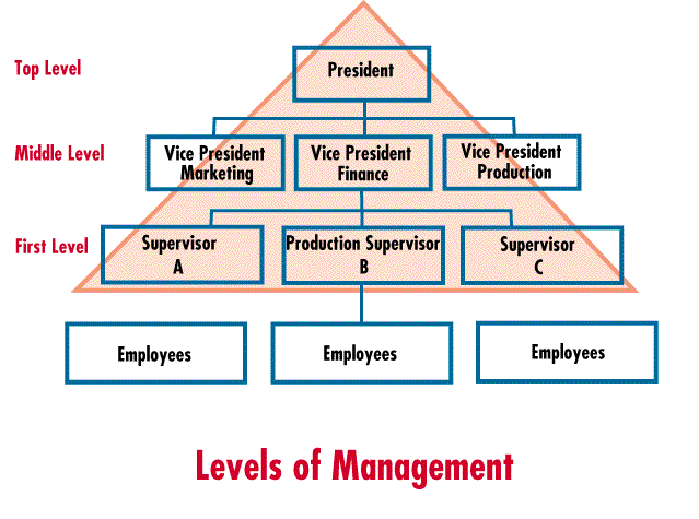 list and explain the 3 levels of managers in an organisation A part of an organization that maintains responsibility for the productivity and the work performance of employees there are generally three levels of management within an organization including top-level, middle-level, and first level that are tiered in numbers with more first level managers, a smaller amount of middle managers, and less top.